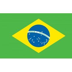Pavillons & drapeaux Brésil