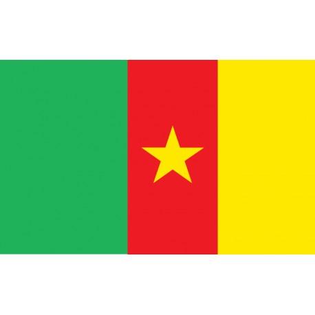 Pavillons & drapeaux Cameroun