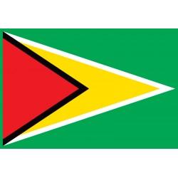 Pavillons & drapeaux Guyana