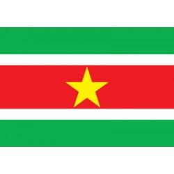 Pavillons & drapeaux Surinam